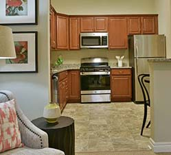 independent living kitchen